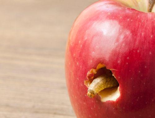 La carie nei denti da latte: prevenzione e cura
